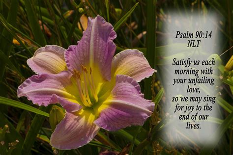 Psalm 90 14 Photograph by Inspirational Designs