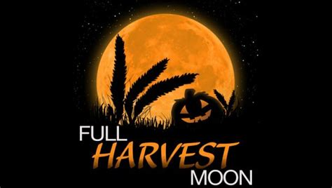 What's unusual about tonight's full Harvest Moon | FOX 5